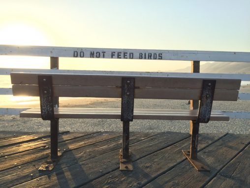 Bench at Pismo Beach Pier